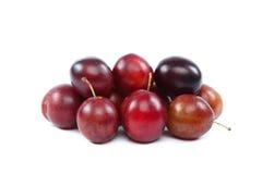 Fresh plums on white background. Stock Photo