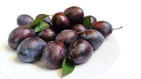 Fresh plums on white plate. stock photo