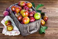 Fresh plums in wooden basket with green leaves Stock Photography