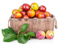 Fresh plums in wooden basket with green leaves Royalty Free Stock Image
