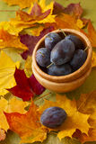 Fresh plums in a wooden suit Stock Image