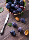 Fresh plums Stock Photography