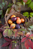 Fresh plums on wooden table Stock Photography