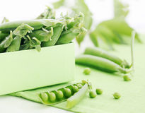 Fresh pods of green peas Royalty Free Stock Image