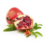 Fresh pomegranate with flower and leaves. Isolated on white stock photography