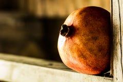 Fresh pomegranate fruit. Fresh ripe pomegranate fruit closeup Stock Image