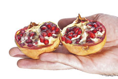 Fresh pomegranate in hand Stock Images