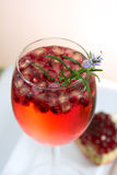 fresh pomegranate prosecco cocktail summer drink Royalty Free Stock Photos