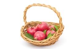 Fresh pomegranates. In a basket stock image
