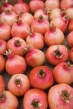 Fresh pomegranates royalty free stock photography