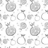 Fresh pomegranates hand drawn background. Doodle wallpaper vector. Colourful seamless pattern. Illustration vector illustration
