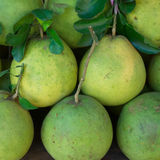 fresh pomelo Royalty Free Stock Images