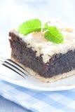 Fresh poppy seed cake Stock Images