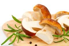 Fresh porcini mushrooms. On cutting board Stock Photos