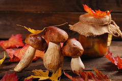 Fresh porcini and pickled mushrooms. Some fresh porcini mushrooms and autumn leaves lying on wooden background stock photography