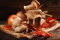 Fresh porcini and pickled mushrooms. Some fresh porcini and jar of homemade pickled mushrooms on wooden background stock images