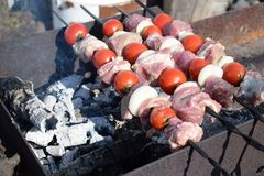 Fresh pork meat with vegetables grilled. Cooking in nature royalty free stock photo