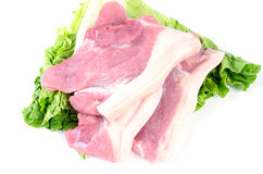 Fresh pork meat on white background. Fresh pork meat on the white background Royalty Free Stock Photos