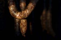 Fresh pork sausages Stock Image