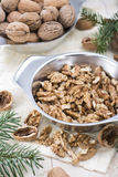 Fresh portion of Walnuts Stock Image