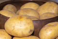Fresh potato from the farmer #8 Royalty Free Stock Photography