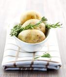 Fresh potato and fresh rosemary Royalty Free Stock Photos
