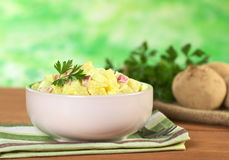 Fresh Potato Salad Stock Photo