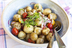 Fresh Potato Salad Stock Photography