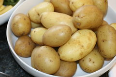 Fresh potatoes. Waiting for further instructions Royalty Free Stock Photo