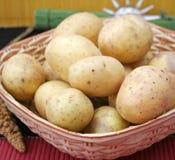 Fresh potatoes Stock Photography