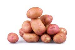 Fresh potatoes royalty free stock images