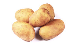 Fresh potatoes Stock Photography