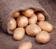 Fresh potatoes in bag Stock Photography
