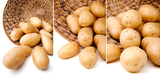 Fresh potatoes in a basket Royalty Free Stock Images