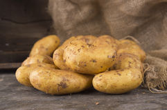 Fresh potatoes on  dark  old wooden Stock Photography