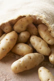 Fresh Potatoes In Hessian Sack Royalty Free Stock Photos