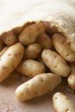 Fresh Potatoes In Hessian Sack royalty free stock photos
