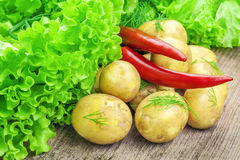 Fresh potatoes with lettuce and peppers. On table Stock Image