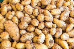 Fresh potatoes at a market Stock Images