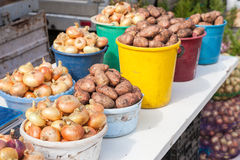 Fresh potatoes and onion of new harvest ready to sale Stock Images
