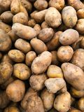 Potatoes, raw from the farm is included for sale in supermarkets royalty free stock images