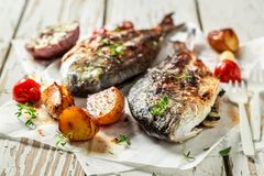 Fresh potatoes and seabream with herbs and tomatoes. On old table stock image