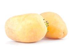 fresh  potatoes tubers on white background healthy potato Vegetable food isolated Stock Photos