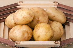 Fresh potatoes in vase Stock Images