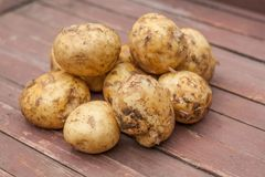 Many Potatoes in a bowl on wooden table royalty free stock photography