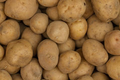 Fresh potatoes. Vegetable Market. Fresh potatoes. Picture for interior design or website design. Background. Many potatoes. Indian vegetable market Stock Image