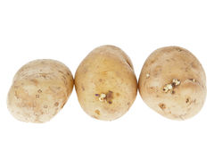 Fresh potatoes on white background Stock Photography