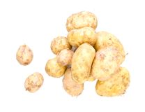 Fresh potatoes on a white background Royalty Free Stock Images