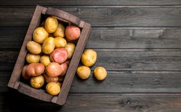 Fresh potatoes in a wooden box stock photography