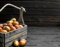 Fresh potatoes in a wooden box royalty free stock photography